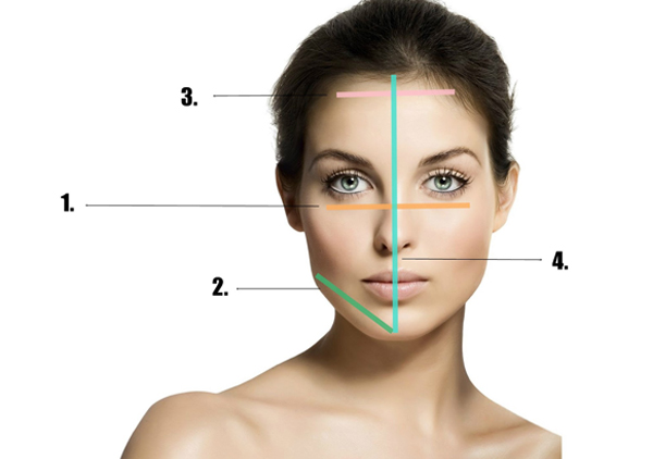 different face shapes and make-up application tips