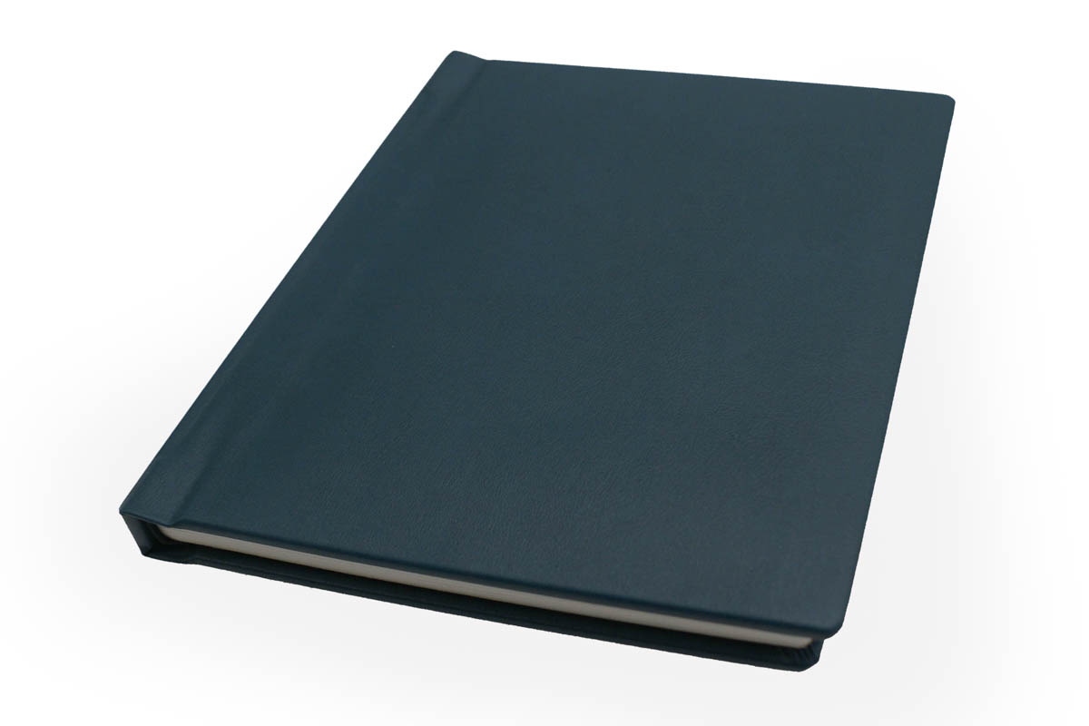 Tavullia Bonded Leather Flush Mount Albums