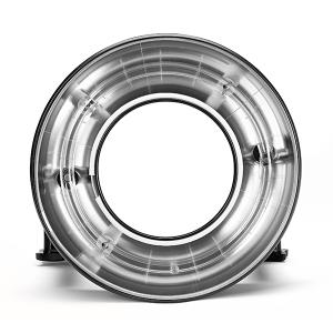 Acute/D4 Ring